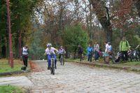 Zawody kolarskie 2012